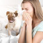 4 Common Winter HVAC Problems